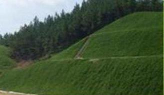 三维加筋固土绿化网垫