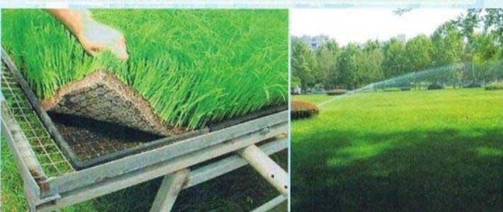 道路养护用营养土工布