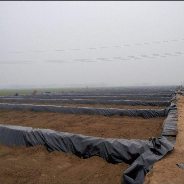 厂家教你如何延长水产养殖防渗膜的使用寿命