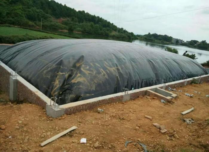 化粪池防水板