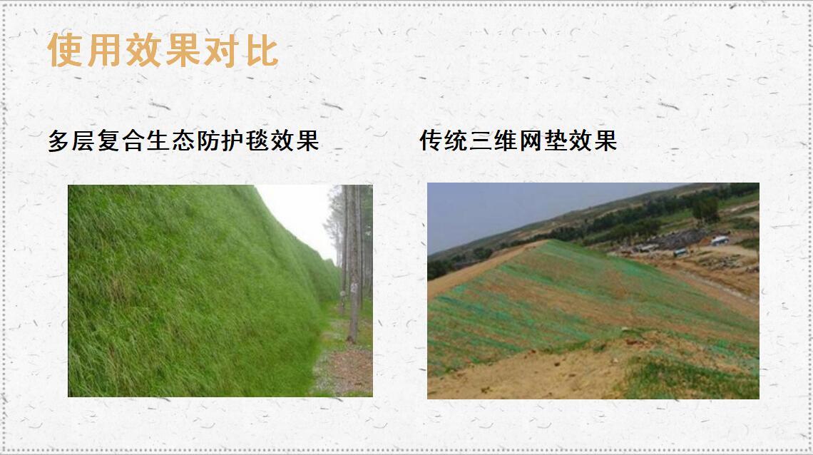 多层生态防护毯效果对比